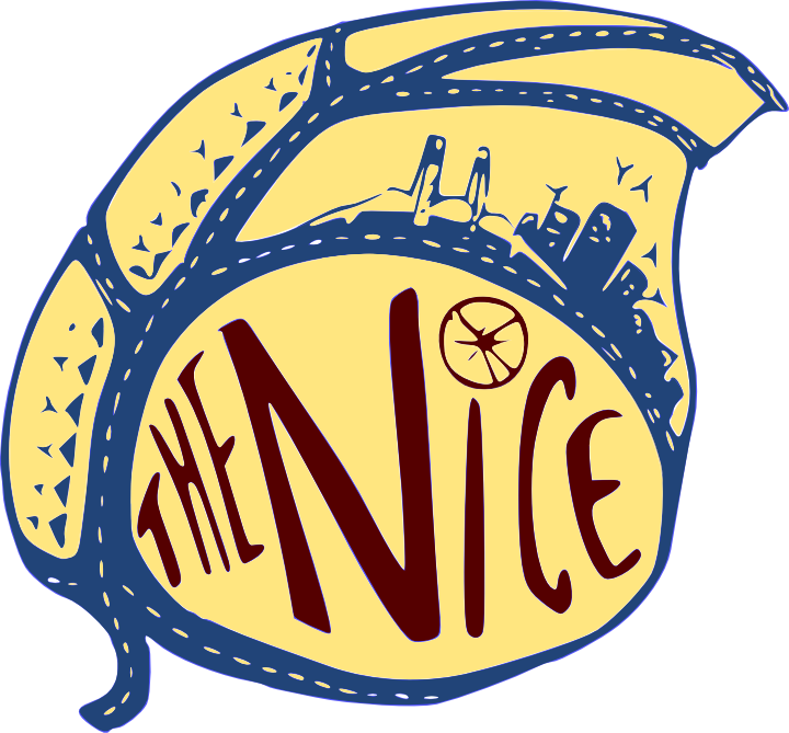 NICE logo 2.0